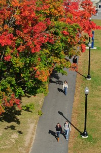 <p>Students walk on the Student Union Mall, as seen from the roof of the Student Union. Photo by Peter Morenus</p>