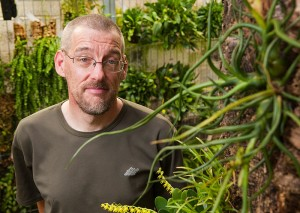 "<p>Clint Morse, manager of growth operations for the ecology and evolutionary biology department, in the Epiphyte Room of the EEB greenhouse. The epiphyte shown at right is a Tillandsia bulbosa (or ""dancing bulb""). Photo by Frank Dahlmeyer</p>"