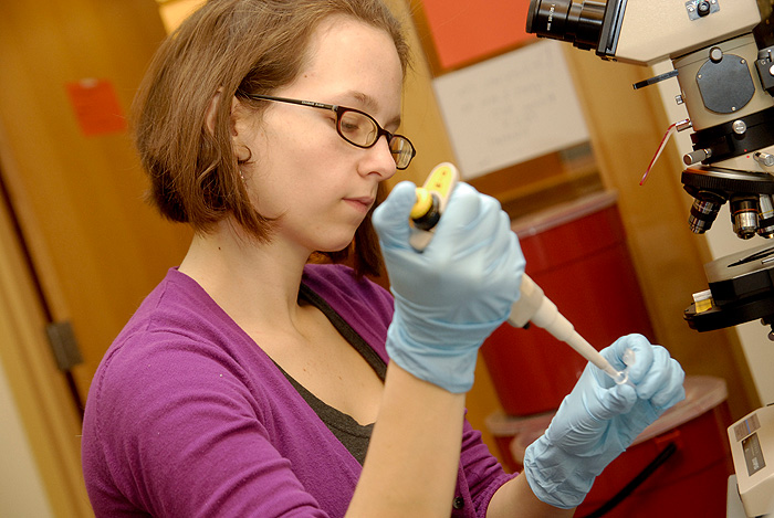 <p>Meaghan Roy-O'Rielly, University Scholar, works in the lab. Photo by Lauren Cunningham</p>
