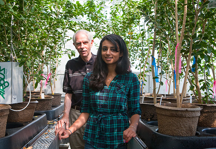 Nikisha Patel with her advisor, Professor Greg Anderson.