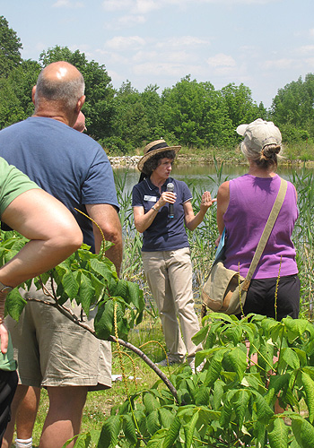 Donna Ellis, an IPM extension specialist, shared her knowledge of invasive plants and prospects for their control.
