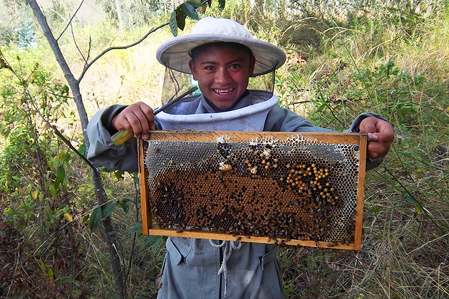 Members of a rural community in Ecuador are starting a beekeeping cooperative with the help of a UConn alumna volunteering with the Peace Corps. (Peace Corps Photo)