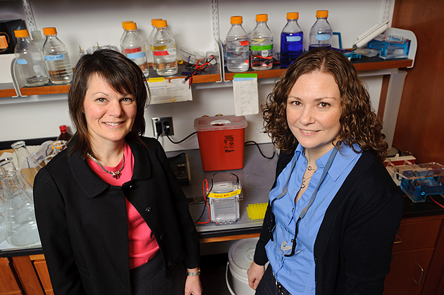 Graduate student Janet Paulsen, right, with her mentor Amy Anderson, associate professor of pharmaceutical sciences. Both are finalists for a 2012 Women of Innovation Award. (Peter Morenus/UConn Photo)