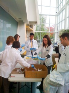 Pharmacy students sort through medications at the 2012 Drug Take Back Day. (Photo provided by John Dobbins)