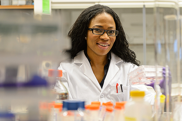 Sophia Nnenna Ononye, a graduate student, with plates of cancer cells on Nov. 7, 2012. (Peter Morenus/UConn Photo)