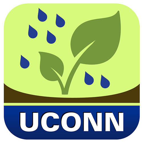 Rain Garden App Puts UConn on Apples Stage UConn Today