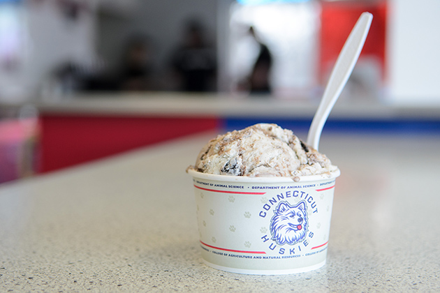 The official 2013 UConn Senior Scoop flavor at the Dairy Bar on Jan. 25, 2013. (Ariel Dowski/UConn Photo)