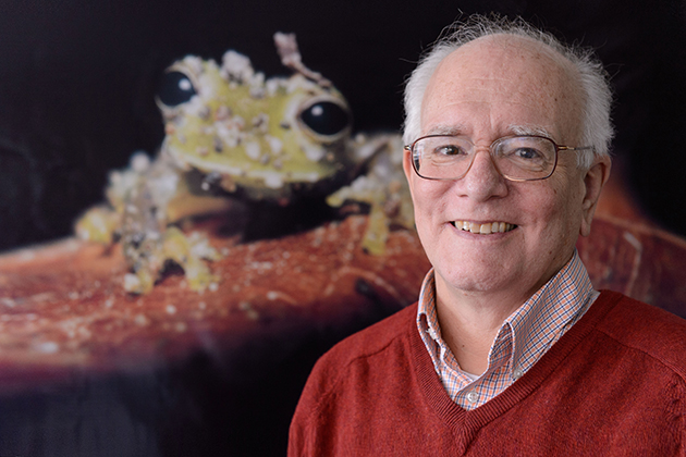 Kentwood Wells, professor and head of the ecology and evolutionary biology department, is being honored for the impact of his work on the field of animal behavior. (Peter Morenus/UConn Photo)