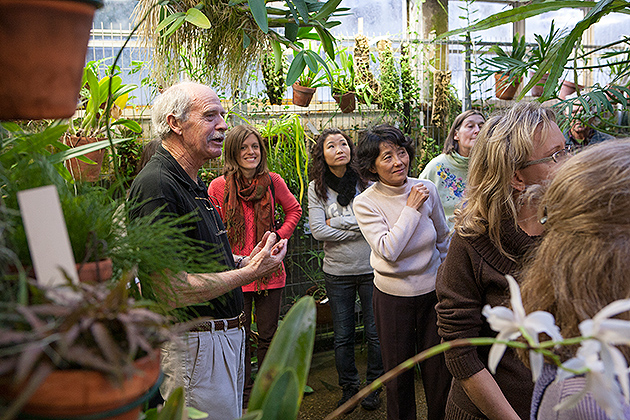 """Emeritus professor Terry Webster began his career at UConn in 1965, two years after the EEB greenhouses were opened. He says, """"The older a greenhouse gets, the more it acclimates. It settles into a maturity that lends itself to the plants growing there."""" (Sean Flynn/UConn Photo). (Sean Flynn/UConn Photo)"""