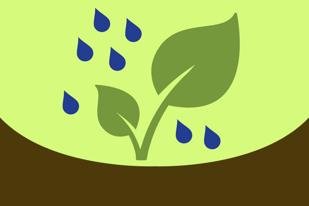 Rain garden app - featured