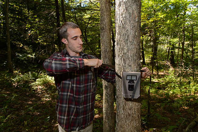 Michael Evans, a Ph.D. student in natural resources and the environment, sets up a motion-activated camera for studying wildlife in the Fenton Forest. (Peter Morenus/UConn Photo)