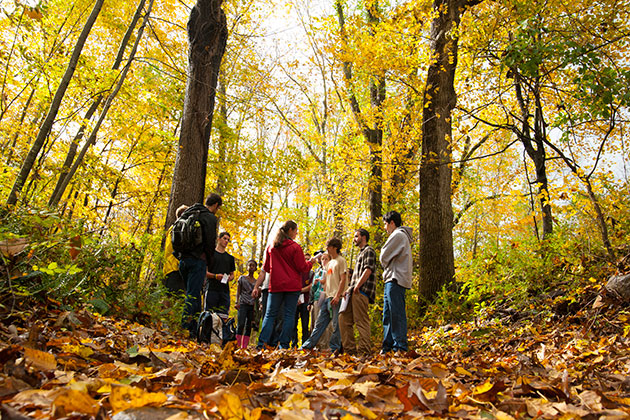Jenica Allen, assistant professor-in-residence, teaches an outdoor ecology class in the UConn Forest. (Sean Flynn/UConn Photo)