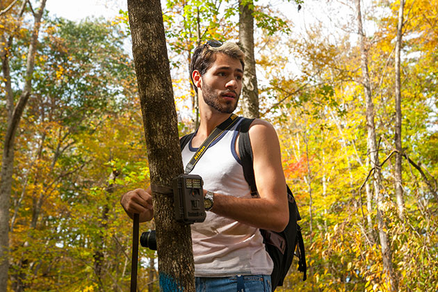 Nicholas Shamp '15, setting up a motion sensing camera outdoors near Horsebarn Hill during a class instructed by Kurt Schwenk, professor of ecology & evolutionary biology. (Sean Flynn/UConn Photo)