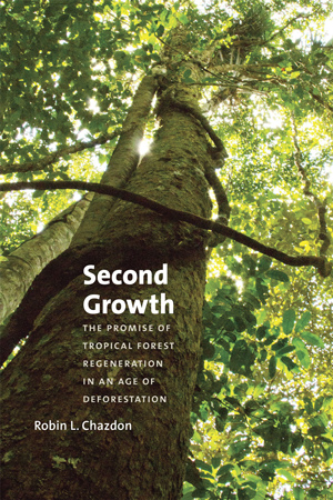 Robin Chazdon's new book (University of Chicago Press, 2014) brings attention to the promise of new growth in previously deforested areas. (Photo provided by University of Chicago Press)