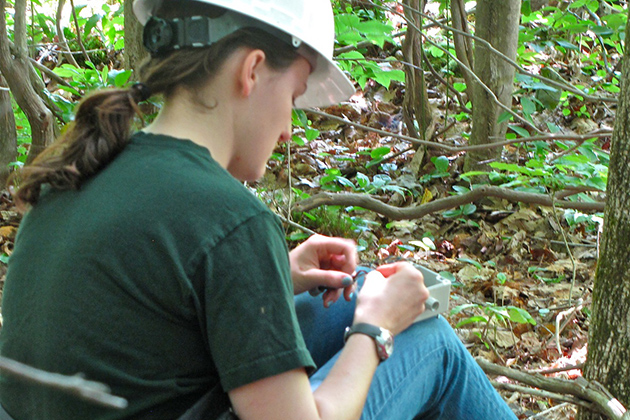 Bailey McNichol '15 (CAHNR) prepares a biaxial inclinometer to be attached to a tree. (Sheila Foran/UConn Photo)