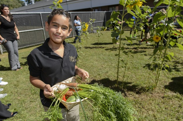 A student at Goodwin Elementary School in East Hartford displays vegetables he has harvested. (Peter Morenus/UConn Photo)