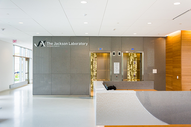 An interior view of the Jackson Laboratory for Genomic Medicine. (Derek Hayn/Centerbrook Architects)