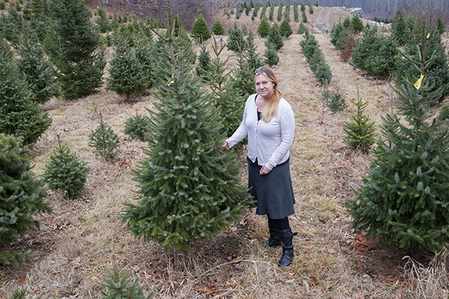Jill Wegrzyn, ecology and evolutionary biology assistant research professor, at a Christmas tree farm. (Sean Flynn/UConn Photo)