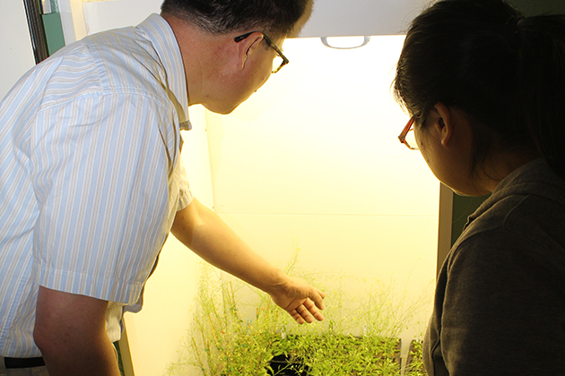 Huanzhong Wang, left, assistant professor in the Department of Plant Science and Landscape Architecture. (Kevin Noonan/UConn Photo)