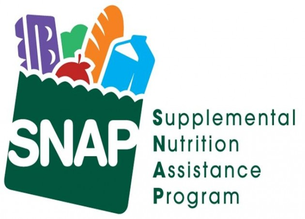analysis of the snap program The supplemental nutrition assistance program the analysis also suggests that snap participation decreases participants' intake of dark green/orange vegetables.