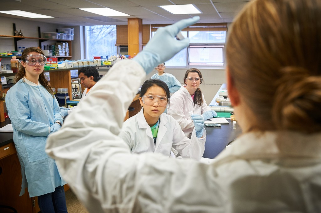 Nichole Broderick, assistant professor of molecular and cell biology gives instructions to students in a microbiology lab at the Torrey Life Sciences Building on Nov. 10, 2015. (Peter Morenus/UConn Photo)