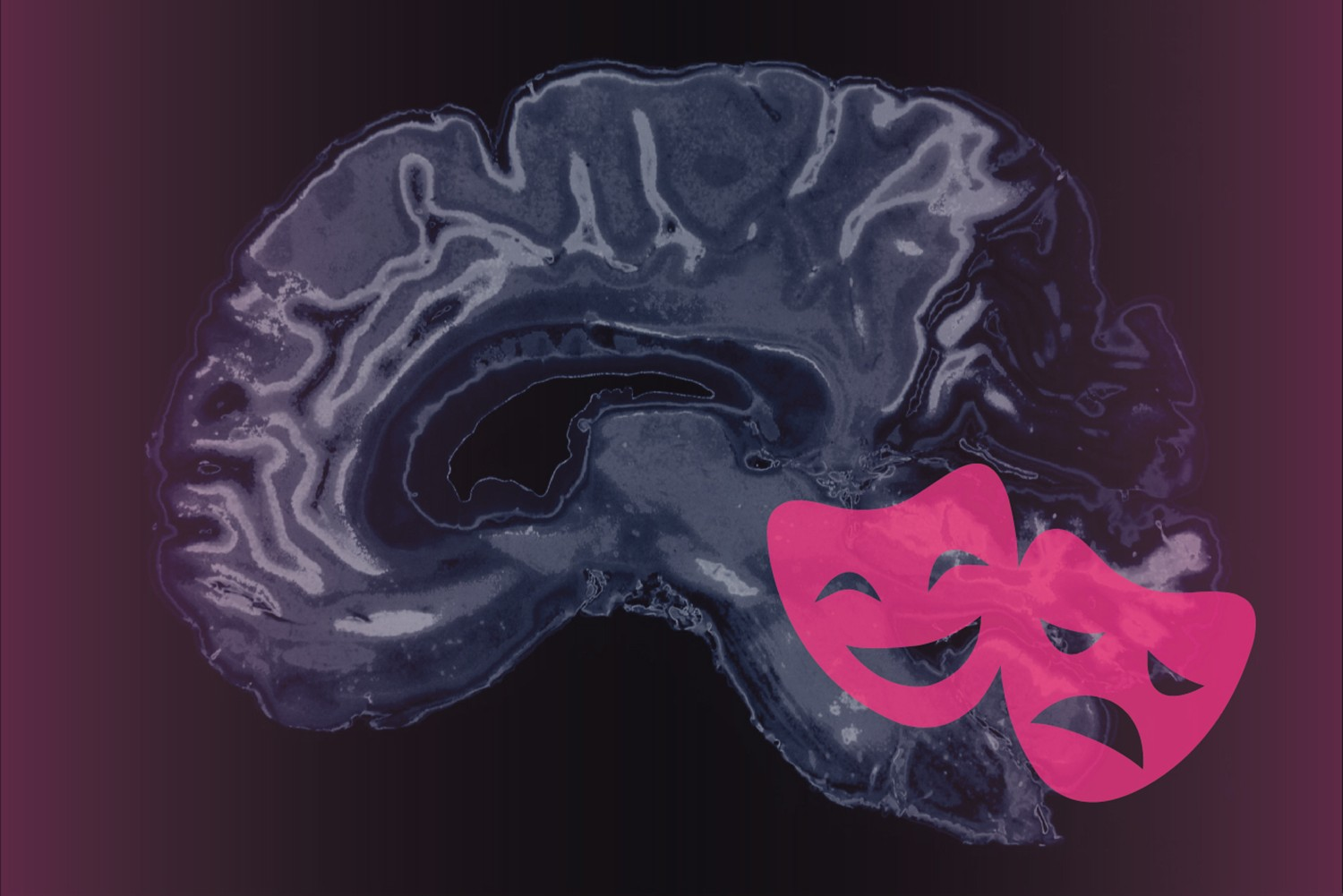 Graphic representing emotions and the brain. (Christa Tubach/UConn Image)