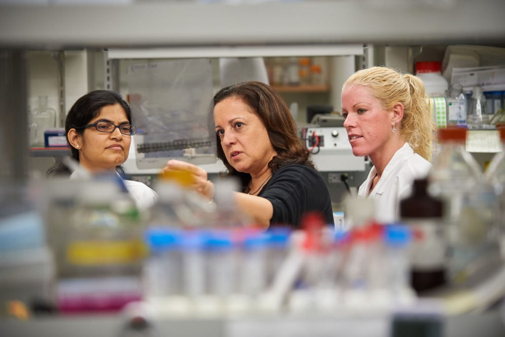 Annabelle Rodriguez-Oquendo, at her lab on Oct. 14, 2015. (Peter Morenus/UConn Photo)