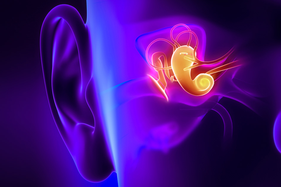 Researchers at UConn Health and MIT have developed a new way of imaging the middle ear using infrared light, which they say could provide much more accurate diagnosis of ear infections. (Courtesy of Massachusetts Institute of Technology)