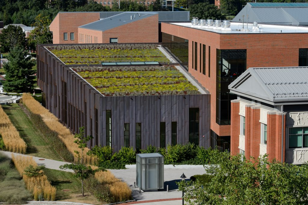A view of the green roof of Laurel Hall on Sept. 4, 2013. (Peter Morenus/UConn Photo)