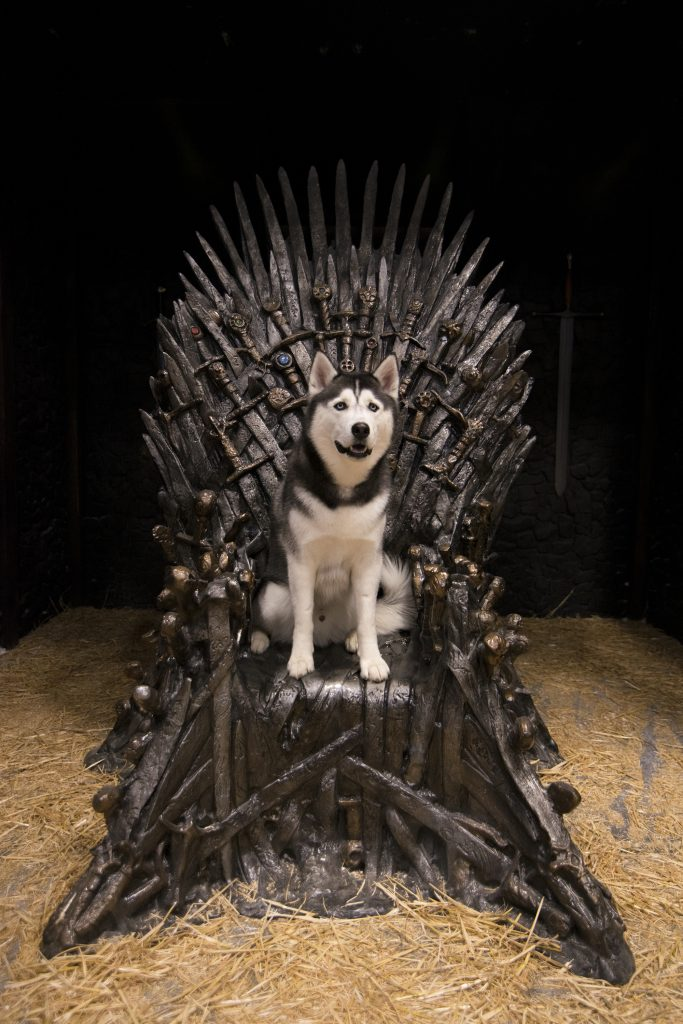Jonathan XIV also took a turn on the Iron Throne. (Angelina Reyes/UConn Photo)