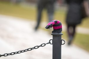 A lost mitten on a pole on Jan. 17, 2017. (Sean Flynn/UConn Photo)