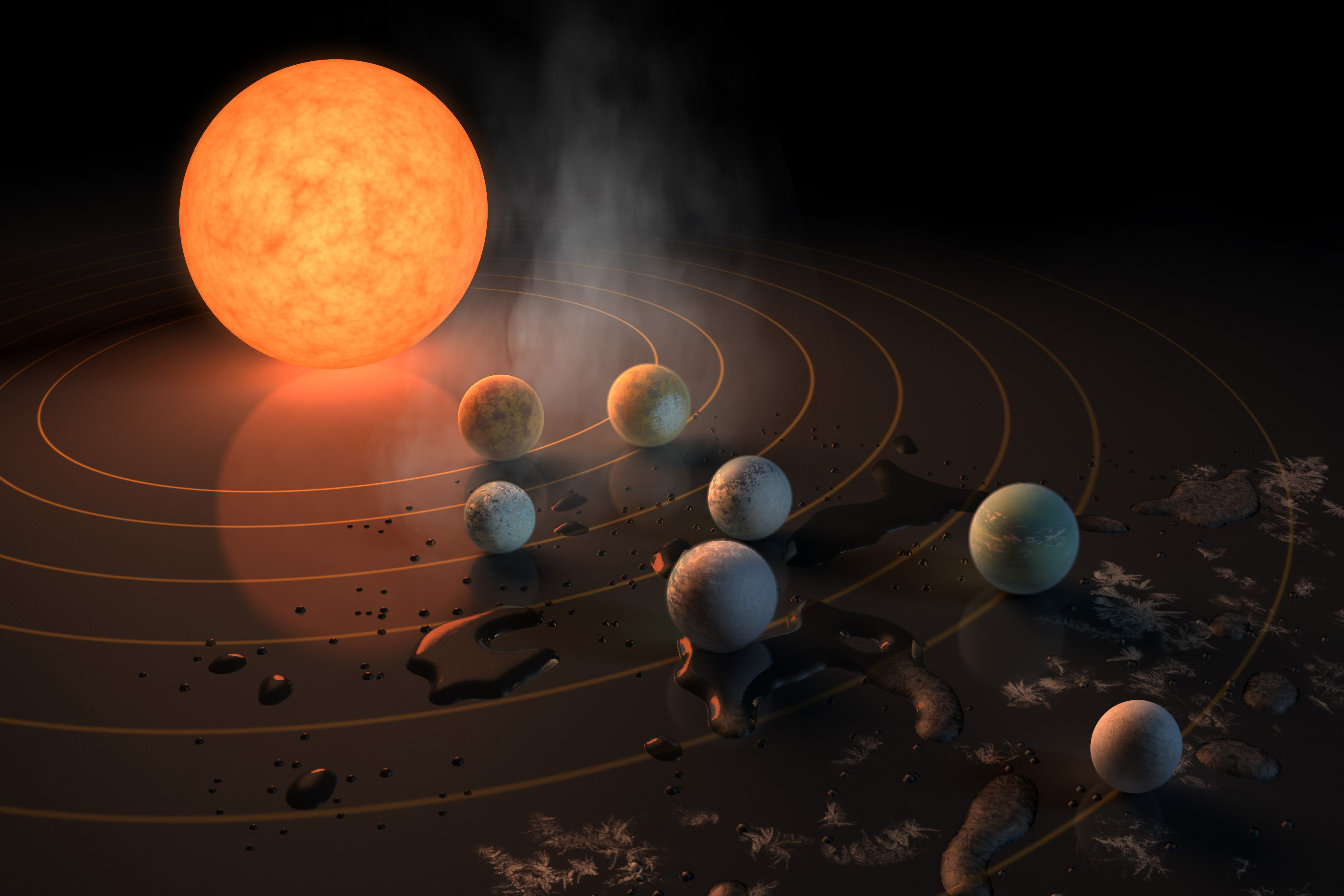 The Seven New Planets Next Door