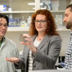 Rachel O'Neill, professor of molecular and cell biology with Craig Obergfell, a research assistant, (beard) and Nathaniel Jue, a postdoctoral fellow examine a plate used for sequencing on Dec. 20, 2012. (Peter Morenus/UConn Photo)