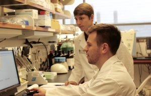 Brendan Clark '17 (Pharm; CLAS) - seated - and Tyler Ackley '17 (Pharm; CLAS) compare notes in the lab. (Sheila Foran/UConn Photo)