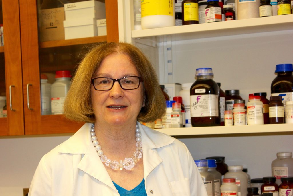 Debra Kendall, Board of Trustees Distinguished Professor in Medicinal Chemistry in the School of Pharmacy. (Sheila Foran/UConn Photo)