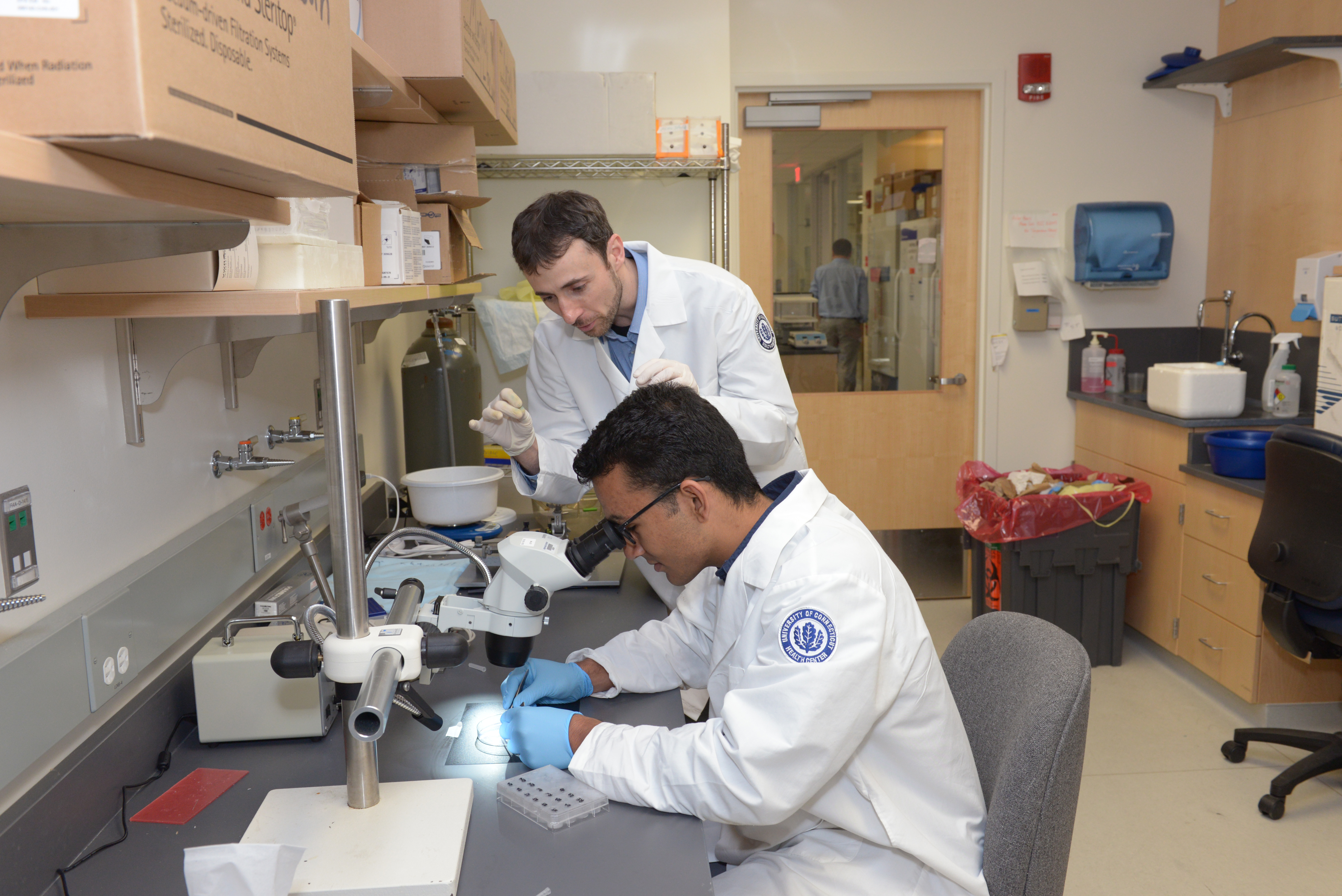 New Program Pairs Undergraduates with UConn Health Researchers